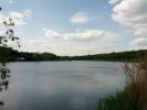 Lacul de la gradina zoologica