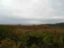 Drumul National M14 la km 269 vedere spre Intovarasirea pomicola Galbena Gutuie