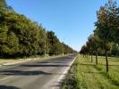 Strada Mesterul Manole de la Ciocana spre Botanica